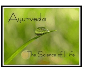 Ayurveda Lifestyle Coaching - Maria Weston CMT